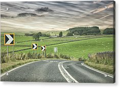 Pointing The Way Acrylic Print