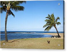 Poipu Beach Acrylic Print by Kelley King