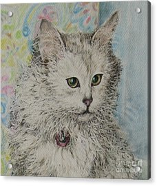 Poised Cat Acrylic Print