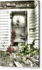 Poison Ivy Acrylic Print by Sari Sauls