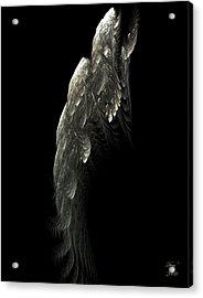 Poisson Volant Acrylic Print by Dom Creations