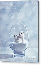 Polar Bear In Snow Globe Acrylic Print by Amanda Elwell