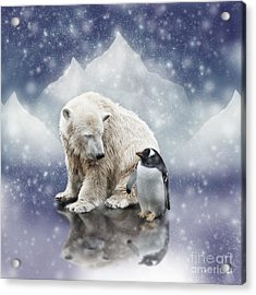 Polar Bear Meets Penguin Acrylic Print
