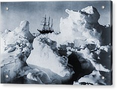 Polar Explorer, Ernest Shackletons Acrylic Print by Everett