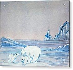 Polar Ice Acrylic Print by Terri Mills