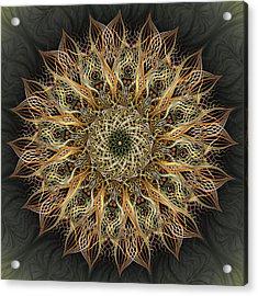 Pollen Acrylic Print by Becky Titus