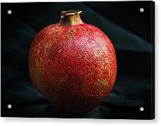Pomegranate Acrylic Print by Terence Davis