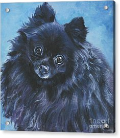 Pomeranian Black Acrylic Print