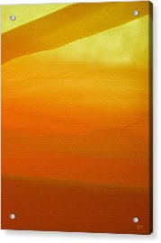 Poncho Abstract 10 Acrylic Print by Jeff Breiman