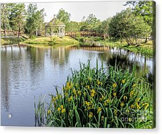 Pond And Gazebo At Cordage Park   Acrylic Print by Janice Drew