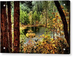 Pond At Golden Or. Acrylic Print