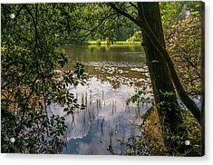 Pond In Spring Acrylic Print