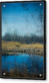 Pond In The Field Acrylic Print by Michel Filion