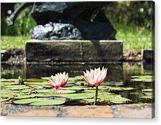 Pond Palette Acrylic Print