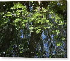 Pond Reflection 1 Acrylic Print by Janeen Wassink Searles