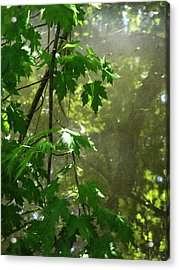 Pond Reflection 2 Acrylic Print by Janeen Wassink Searles