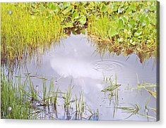 Pond Ripples Photo Acrylic Print