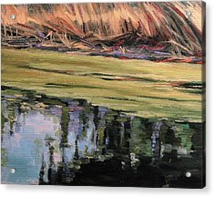Pond Scum-heather Farms Walnut Creek Acrylic Print