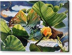 Pond Textures Acrylic Print by Sharon Freeman