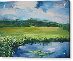 Pond Valley Acrylic Print by Min Wang