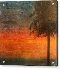 Ponderosa Pine Acrylic Print by Patt Nicol