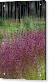 Ponderosa With Grass Acrylic Print