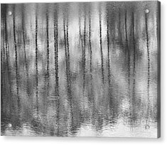 Pondpoland Acrylic Print