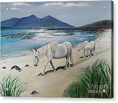 Ponies Of Muck - Painting Acrylic Print by Veronica Rickard