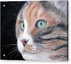 Ponta Acrylic Print