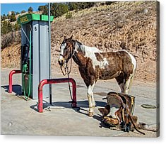 Acrylic Print featuring the photograph Pony At The Pump by Britt Runyon