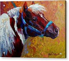 Pony Boy Acrylic Print
