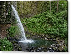 Acrylic Print featuring the photograph Ponytail Falls by Greg Nyquist