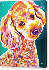 Poodle - Curly Acrylic Print