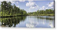 Pool H Panorama 02 Acrylic Print