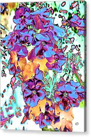 Pop Art Pansies Acrylic Print by Marianne Dow