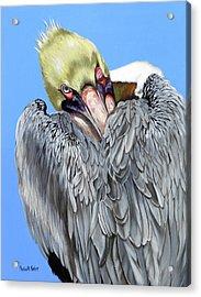 Popeye The Pelican Acrylic Print