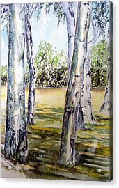 Poplar Tree   Acrylic Print by Paul Sandilands