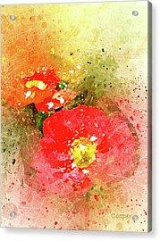 Poppies 5 S Acrylic Print