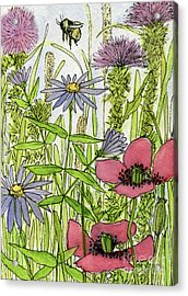 Poppies And Wildflowers Acrylic Print