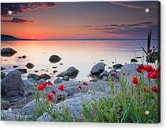 Poppies By The Sea Acrylic Print