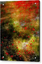 Poppies For Remembrance Acrylic Print by Dorothy Berry-Lound