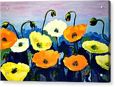 Poppies In Colour Acrylic Print