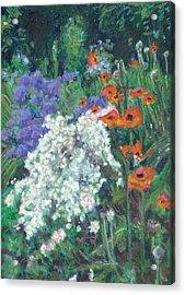 Poppies In June Garden Acrylic Print by Judy Adamson