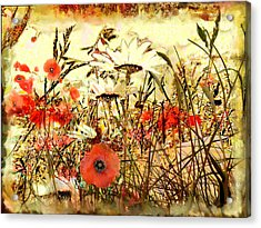 Poppies In Waving Corn Acrylic Print by Anne Weirich