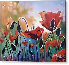 Poppies Acrylic Print by Kathy  Karas
