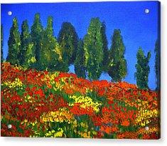 Poppies Landscape Acrylic Print by Mary Jo Zorad