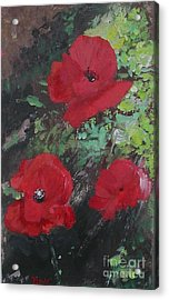 Poppies  Acrylic Print by Lizzy Forrester