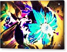 Poppiins Acrylic Print