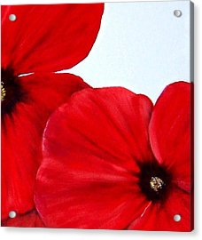Poppy 2 Acrylic Print by Penny Everhart