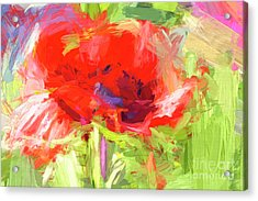 Acrylic Print featuring the photograph Poppy Abstract Photo Art by Sharon Talson